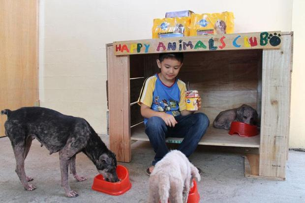 happy-animals-club-pet-shelter-kid-1