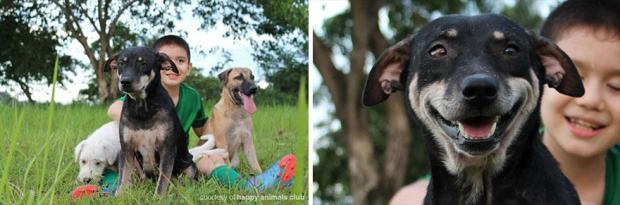 happy-animals-club-pet-shelter-kid-3